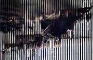 imagesCAP4XMV1