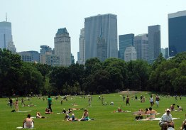 sheep-meadow-l[1]