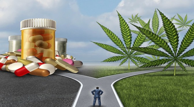99% PROOF: Big Pharma Shaking in Their Boots as 80% of Cannabis Users Give Up Prescriptions Pills for Marijuana